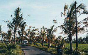 Bali Reisblondie backpacken