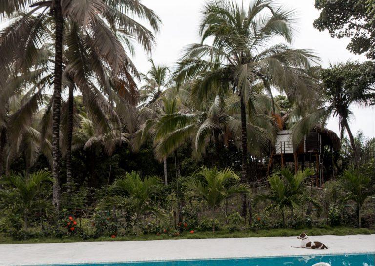 Reizen Colombia Reisblondie